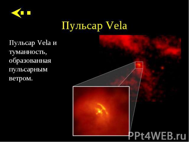 Пульсар Vela и туманность, образованная пульсарным ветром. Пульсар Vela и туманность, образованная пульсарным ветром.