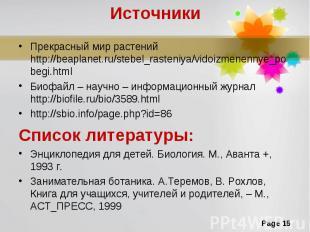 Прекрасный мир растений http://beaplanet.ru/stebel_rasteniya/vidoizmenennye_pobe