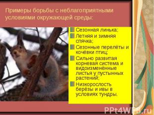 Примеры борьбы с неблагоприятными условиями окружающей среды: Сезонная линька; Л