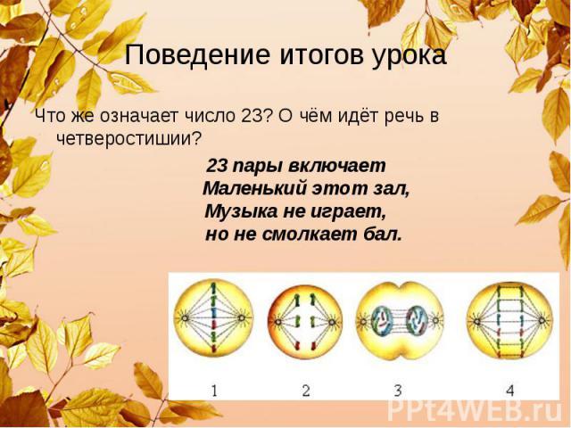 Поведение итогов урока Что же означает число 23? О чём идёт речь в четверостишии? 23 пары включает Маленький этот зал, Музыка не играет, но не смолкает бал.
