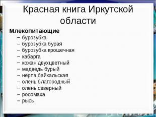 Красная книга Иркутской области Млекопитающие бурозубка бурозубка бурая бурозубк