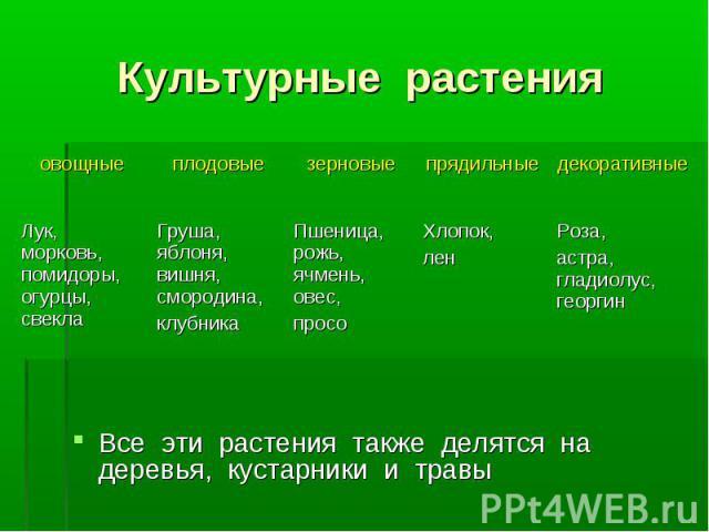 Все эти растения также делятся на деревья, кустарники и травы Все эти растения также делятся на деревья, кустарники и травы