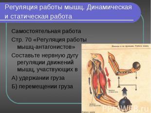 Самостоятельная работа Самостоятельная работа Стр. 70 «Регуляция работы мышц-ант