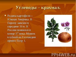 Углеводы – крахмал. Родина картофеля –Южная Америка. В Европу завезен в середине