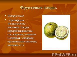 Фруктовые плоды. Цитрусовые. - Грейпфрут. Вечнозеленое растение. Плоды перерабат