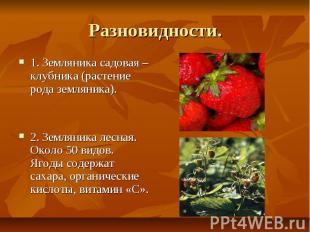 Разновидности. 1. Земляника садовая – клубника (растение рода земляника). 2. Зем