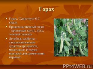 Горох Горох. Существует 6-7 видов. Продовольственный горох – производят крупу, м