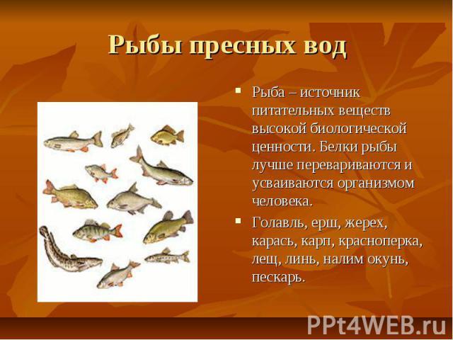 Рыбы пресных вод Рыба – источник питательных веществ высокой биологической ценности. Белки рыбы лучше перевариваются и усваиваются организмом человека. Голавль, ерш, жерех, карась, карп, красноперка, лещ, линь, налим окунь, пескарь.