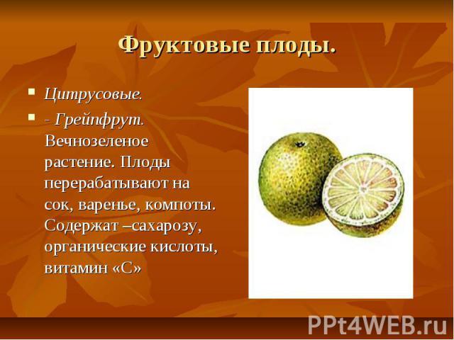 Фруктовые плоды. Цитрусовые. - Грейпфрут. Вечнозеленое растение. Плоды перерабатывают на сок, варенье, компоты. Содержат –сахарозу, органические кислоты, витамин «С»