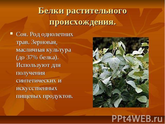 Белки растительного происхождения. Соя. Род однолетних трав. Зерновая, масличная культура (до 37% белка). Используют для получения синтетических и искусственных пищевых продуктов.