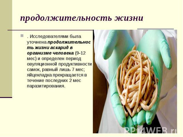 . Исследователями была уточненапродолжительность жизни аскарид в организме человека(9-12 мес) и определен период овуляционной продуктивности самок, равный лишь 7 мес; яйцекладка прекращается в течение последних 2 мес паразитирования. . И…