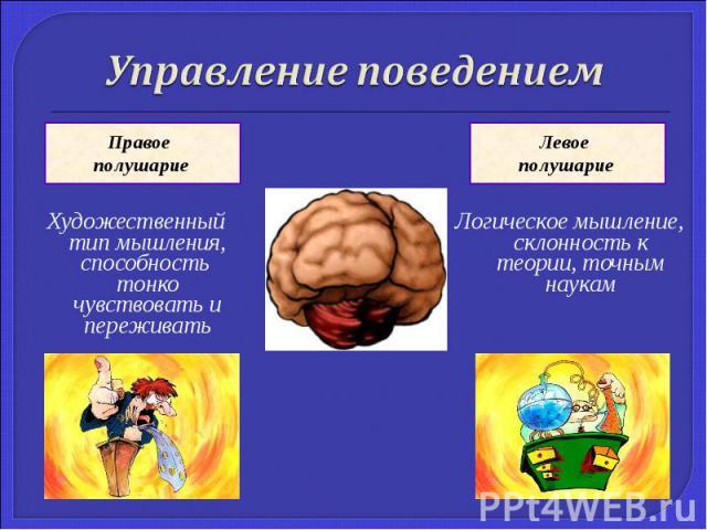 Художественный тип мышления, способность тонко чувствовать и переживать Художественный тип мышления, способность тонко чувствовать и переживать