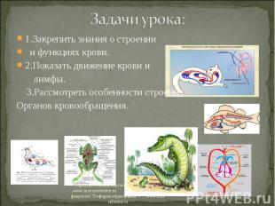 1.Закрепить знания о строении 1.Закрепить знания о строении и функциях крови. 2.