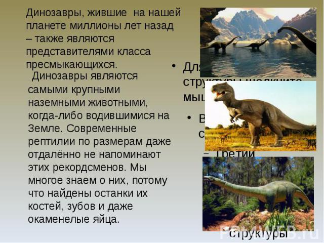 Динозавры, жившие на нашей планете миллионы лет назад – также являются представителями класса пресмыкающихся. Динозавры являются самыми крупными наземными животными, когда-либо водившимися на Земле. Современные рептилии по размерам даже отдалённо не…
