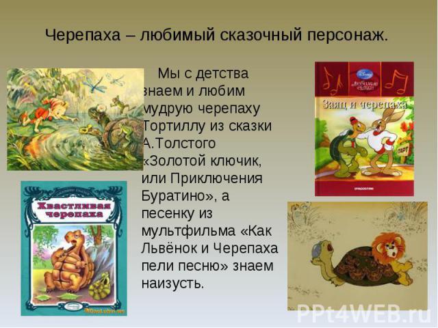 Черепаха – любимый сказочный персонаж.