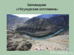 Заповедник «Убсунурская котловина»