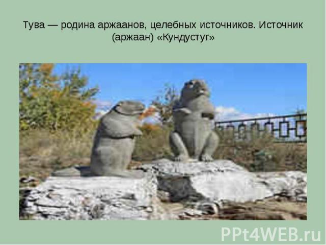 Тува — родина аржаанов, целебных источников. Источник (аржаан) «Кундустуг»