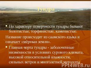 Тундра По характеру поверхности тундры бывают болотистые, торфянистые, каменисты