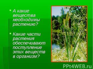 А какие вещества необходимы растению? А какие вещества необходимы растению? Каки