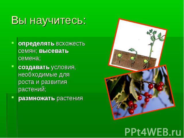 определять всхожесть семян; высевать семена; определять всхожесть семян; высевать семена; создавать условия, необходимые для роста и развития растений; размножать растения