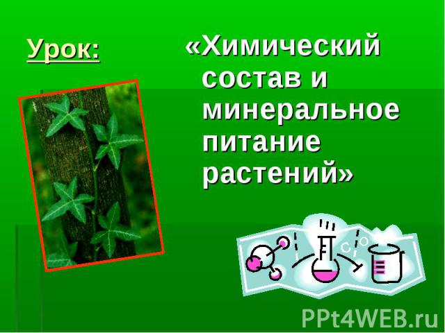 «Химический состав и минеральное питание растений» «Химический состав и минеральное питание растений»