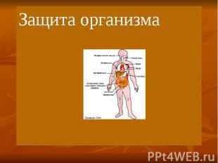 Защита организма Защита организма