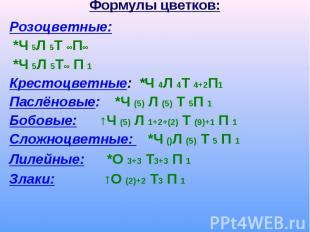 Розоцветные: Розоцветные: *Ч 5Л 5Т ∞П∞ *Ч 5Л 5Т∞ П 1 Крестоцветные: *Ч 4Л 4Т 4+2