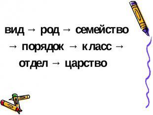 вид → род → семейство → порядок → класс → отдел → царство