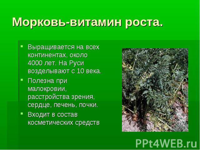 Морковь-витамин роста. Выращивается на всех континентах, около 4000 лет. На Руси возделывают с 10 века. Полезна при малокровии, расстройства зрения, сердце, печень, почки. Входит в состав косметических средств