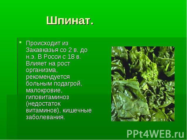 Шпинат. Происходит из Закавказья со 2 в. до н.э. В Росси с 18 в. Влияет на рост организма, рекомендуется больным подагрой, малокровие, гиповитаминоз (недостаток витаминов), кишечные заболевания.