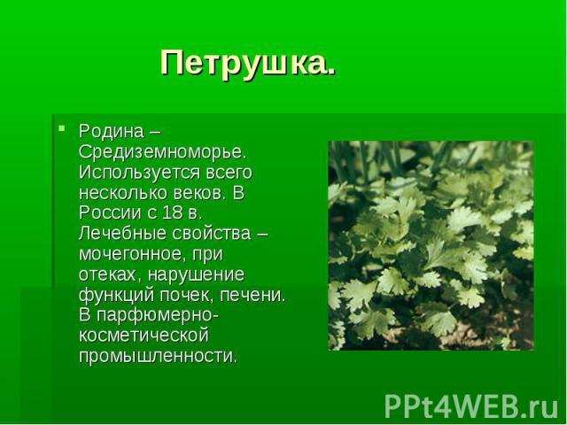 Петрушка. Родина – Средиземноморье. Используется всего несколько веков. В России с 18 в. Лечебные свойства –мочегонное, при отеках, нарушение функций почек, печени. В парфюмерно-косметической промышленности.