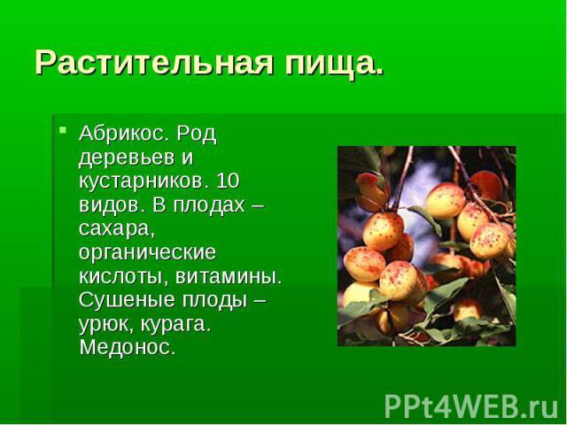 Растительная пища. Абрикос. Род деревьев и кустарников. 10 видов. В плодах –сахара, органические кислоты, витамины. Сушеные плоды – урюк, курага. Медонос.