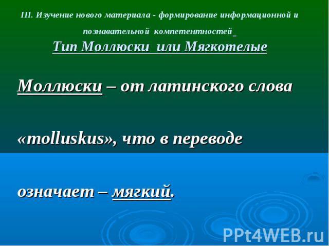 III. Изучение нового материала - формирование информационной и познавательной компетентностей Тип Моллюски или Мягкотелые Моллюски – от латинского слова «molluskus», что в переводе означает – мягкий.