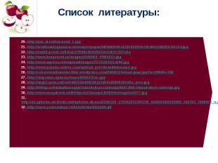 Список литературы: 20. http://pus.at.ua/flax-seed_1.jpg 21. http://totalbeautygl