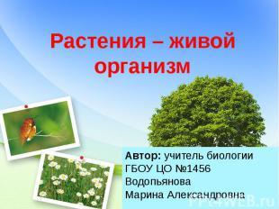 Растения – живой организм Автор: учитель биологии ГБОУ ЦО №1456 Водопьянова Мари
