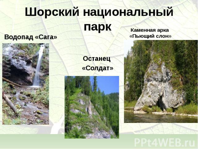 Водопад «Сага» Водопад «Сага»