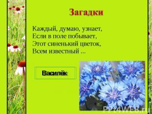 Каждый, думаю, узнает, Если в поле побывает, Этот синенький цветок, Всем известн
