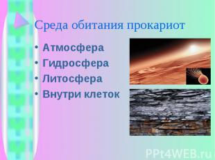 Атмосфера Атмосфера Гидросфера Литосфера Внутри клеток