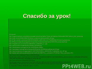 Источники: Источники: http://image.forestbook.ru/media/photos/watermarked/3ce01e
