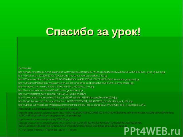 Источники: Источники: http://image.forestbook.ru/media/photos/watermarked/3ce01efea7741eec1621da22ecd760bece8d6786/FileSilver_birch_leaves.jpg http://2oboi.ru/pic/201105/1280x720/2oboi.ru_les-tuman-derevya-zelen_331.jpg http://f2.foto.rambler.ru/pre…