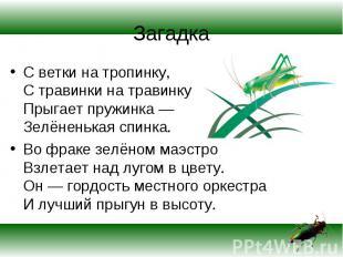 С ветки на тропинку, С травинки на травинку Прыгает пружинка — Зелёненькая спинк