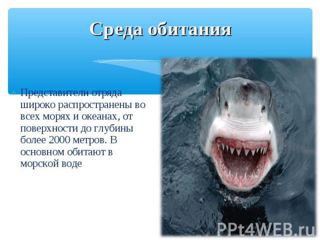 Представители отряда широко распространены во всех морях и океанах, от поверхности до глубины более 2000 метров. В основном обитают в морской воде Представители отряда широко распространены во всех морях и океанах, от поверхности до глубины более 20…