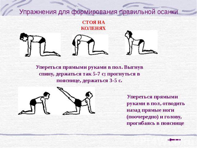 Упражнения для формирования правильной осанки
