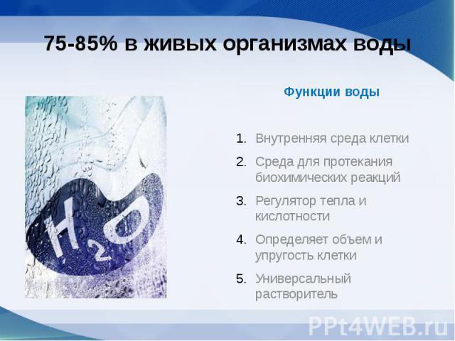 75-85% в живых организмах воды