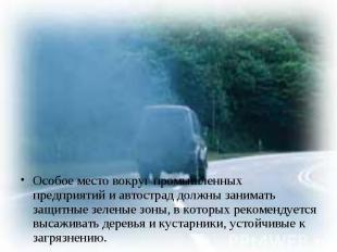 Особое место вокруг промышленных предприятий и автострад должны занимать защитны
