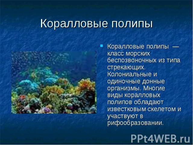 Коралловые полипы — класс морских беспозвоночных из типа стрекающих. Колониальные и одиночные донные организмы. Многие виды коралловых полипов обладают известковым скелетом и участвуют в рифообразовании. Коралловые полипы — класс морских беспозвоноч…