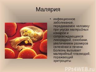 инфекционное заболевание, передаваемое человеку при укусах малярийных комаров и