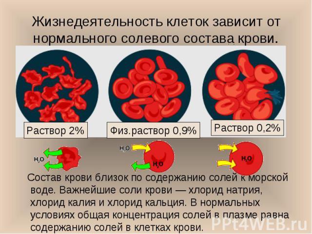 Состав крови близок по содержанию солей к морской воде. Важнейшие соли крови — хлорид натрия, хлорид калия и хлорид кальция. В нормальных условиях общая концентрация солей в плазме равна содержанию солей в клетках крови. Состав крови близок по содер…