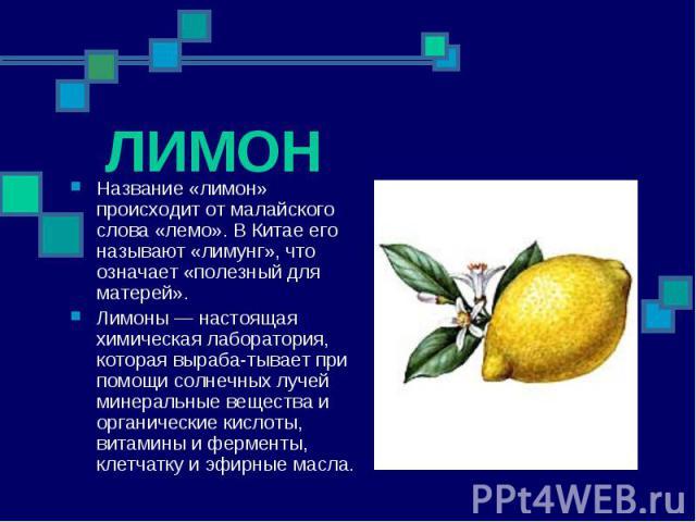 ЛИМОН Название «лимон» происходит от малайского слова «лемо». В Китае его называют «лимунг», что означает «полезный для матерей». Лимоны — настоящая химическая лаборатория, которая вырабатывает при помощи солнечных лучей минеральные вещества и …