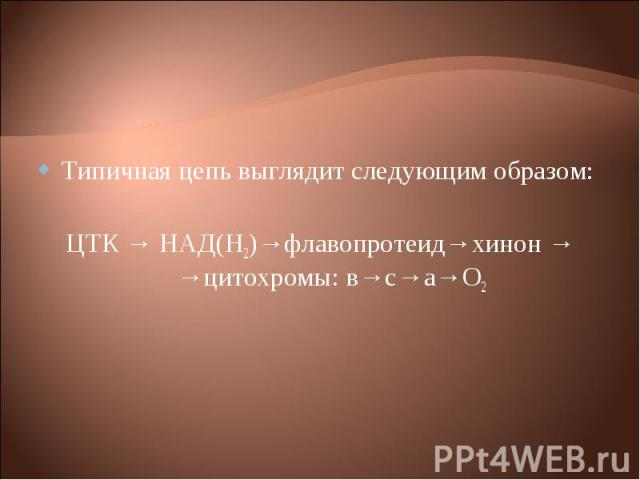 Типичная цепь выглядит следующим образом: Типичная цепь выглядит следующим образом: ЦТК → НАД(Н2)→флавопротеид→хинон → →цитохромы: в→с→а→О2